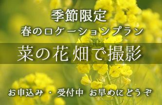 菜の花畑で撮影