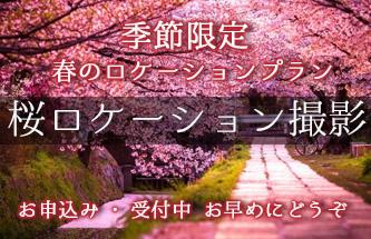 桜ロケーション撮影