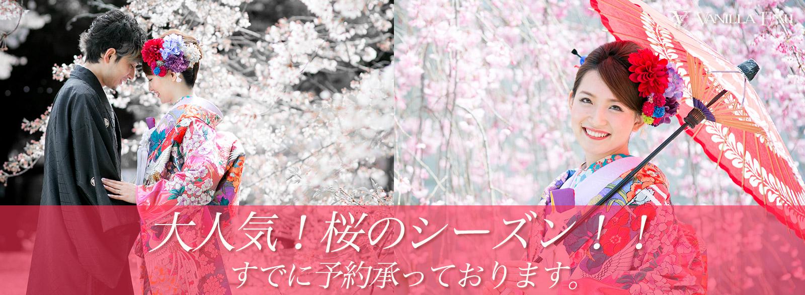 大人気!桜のシーズン!!前撮り